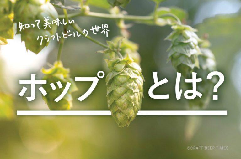 ビール造りに使われる「ホップ」とは?ホップの役割や種類、用途などを解説します
