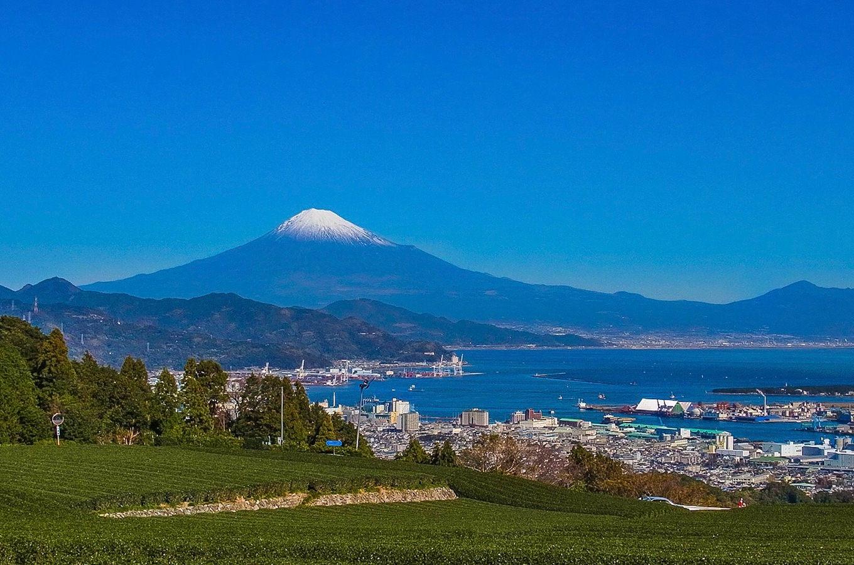 静岡県とクラフトビール
